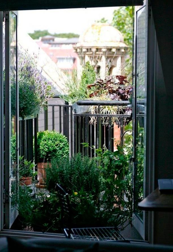 las plantas no deben faltar en jardineras tiestos colgantes del techo para dejar libre el resto del espacio o crear un jardn vertical como el de esta